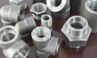 Stainless Steel Forg ...