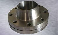 Stainless Steel Weld Neck Raised Face Flanges